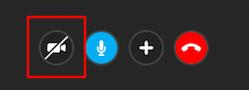 ビデオ通話ボタン